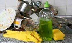 10 green home cleaning tips howstuffworks