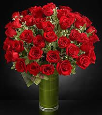 Long Stem Rose Vase Fate Luxury Rose Bouquet 48 Stems Of 24 Inch Premium Long