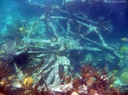 Montana snorkeling images Bermuda shipwreck snorkeling easy access to six shallow ships jpg