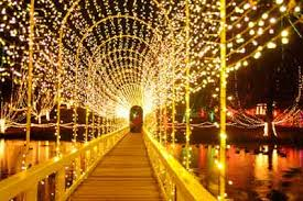 Christmas Lights In Okc Chickasha Festival Of Lights Proud To Be An Okie Pinterest