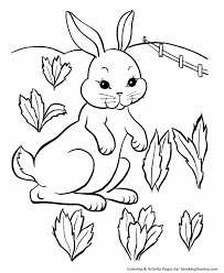 easter bunny coloring pages easter farm bunny coloring sheet
