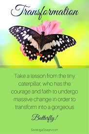 best 25 butterfly sayings ideas on pinterest butterfly quotes