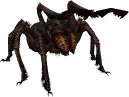 frostbite spider skyrim elder scrolls fandom powered by wikia