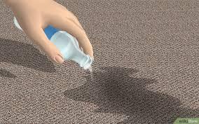 gerüche entfernen geruch hundeurin aus teppichen entfernen wikihow