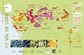 Map Of France Wine Regions by Loire Valley