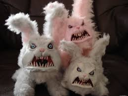 funny pig pictures funny cute rabbits u2013 funny cute rabbit