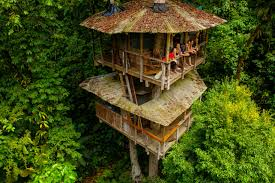 Treehouse Examples Is The Treehouse The Of Sustainable Living Cnn Style