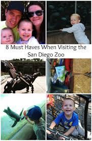 PHOTOS  The San Diego Zoo ABM Wedding Photography     Engagement Portrait Photography San Diego Zoo Balboa Park