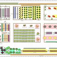 vegetable garden layout ideas beginners u2013 mangut net