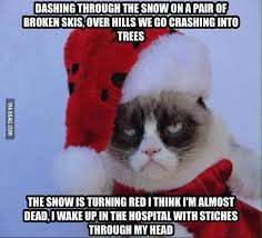 Memes Grumpy Cat - 27 grumpy cat funny memes page 5 quotes reviews