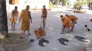 pictures of vientiane laos with photos and images