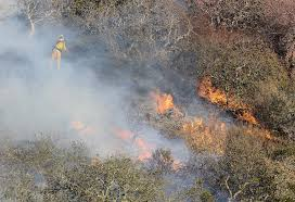 Wildfire Anderson Ca by 1 Killed In Tassajara Fire Burning In Monterey County Sfgate