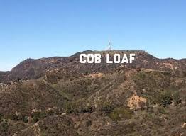 Loaf Meme - cob loaf memes home facebook