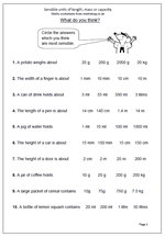 year 4 maths worksheet suggesting suitable units to measure