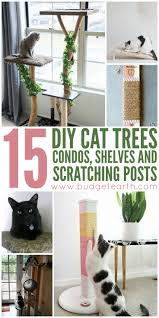Make Your Own Cat Tree Plans Free by Best 25 Diy Cat Tower Ideas On Pinterest Diy Cat Tree Cat