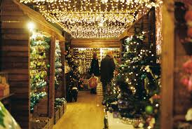 store decoration christmas decoration store pictures photos and images for facebook