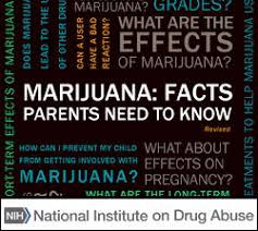 marijuana national institute on abuse nida