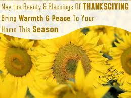 wishing thanksgiving festivals greetings graphics pictures