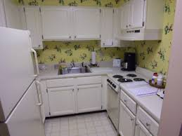 Brookhaven Kitchen Cabinets Kitchen Renovation And Remodeling Atlanta