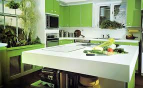 green and kitchen ideas green kitchen color ideas of fresh kitchen green walls 2017