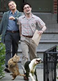 Daniel Radcliffe Meme - leonardo dicaprio walking with daniel radcliffe and their pets