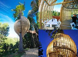 famous tree houses fix it renovations