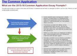 sample common app essays common app resume dalarcon com new common application essay sample resume daily