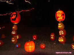 halloween 2014 iamnotastalker