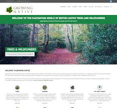 going native my journey from strawberry marketing website