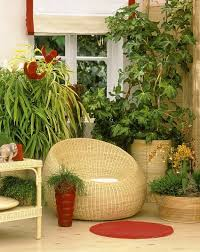 Winter Indoor Garden - 220 best conservatory interiors images on pinterest conservatory