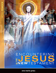 encountering jesus in the new testament textbook introduction