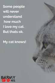 Awesome Quotes About Cats Being - books right relationship france animal and cat