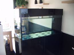 Aquarium Room Divider Diy Aquarium Room Divider Diy Do It Your Self