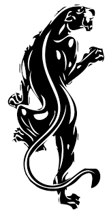 best 25 black panther symbol ideas on pinterest black power