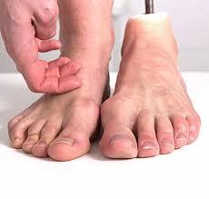 Skeletal Picture Of Foot Best 25 Foot Anatomy Ideas On Pinterest Anatomy Anatomy Study