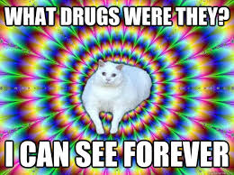 Psychedelic Meme - what drugs were they i can see forever psychedelic cat quickmeme