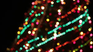 tree with colorful bokeh and lights