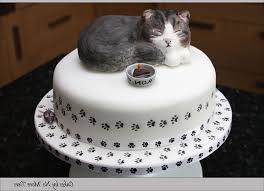 Sculpted cat cake with edible cat topper Gallery Picture CAKE
