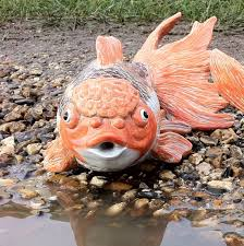charming garden pond fish large goldfish koi indoor outdoor