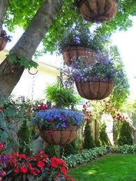Best Plants For Hanging Baskets by Self Watering Hanging Basket Urban Farming Pinterest Gardens
