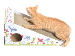 Cat Scratcher Cat Scratcher Board Kinchla Display