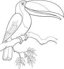 ant coloring pages arterey info