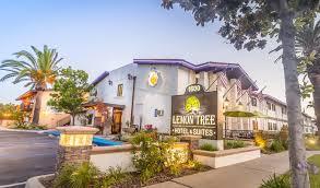 Comfort Inn Near Disneyland Suite Hotels Near Disneyland Lemon Tree Hotel U0026 Suites Anaheim
