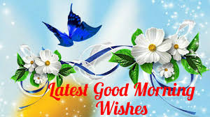 morning wishes 2 best morning wishes hd 2016