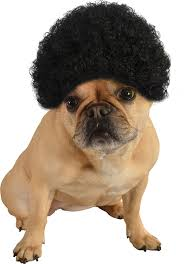 pug halloween costume for baby amazon com rubie u0027s pet costume afro curly wig medium to large