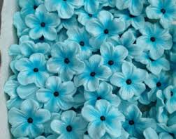 edible blue flowers edible cake flowers etsy