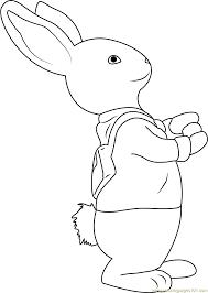 peter rabbit coloring peter rabbit coloring