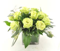 green flowers and plants for st patrick u0027s day norfolk florist