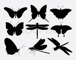butterfly and dragonfly insect silhouettes use for symbol