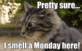 Bad Weather Meme - morning monday bad weather steemit